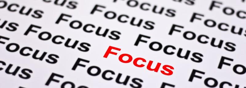 Magento Developers Focus