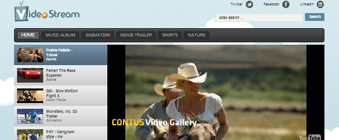 wordpress video gallery plugin