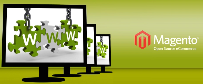 Tips to Set Up Multi Websites on Magento