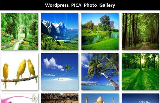 WordPress PICA Photo Gallery